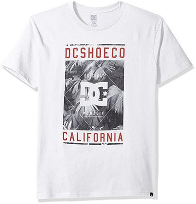 DC Shoes Mens Wanderer T-Shirt ADYZT03912 - The Smooth Shop