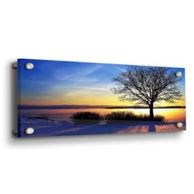Wall Mounted Acrylic Photo