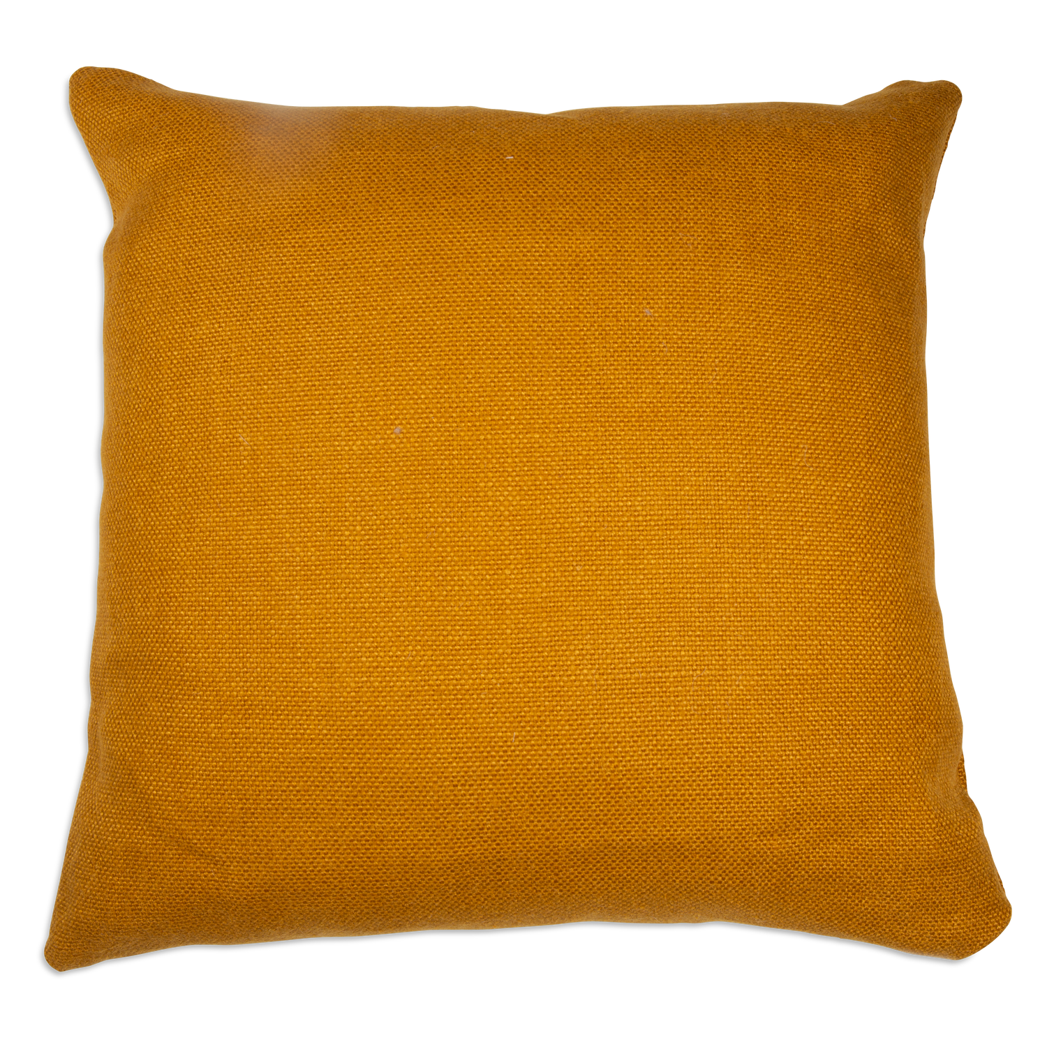 Simone Curry Pillow