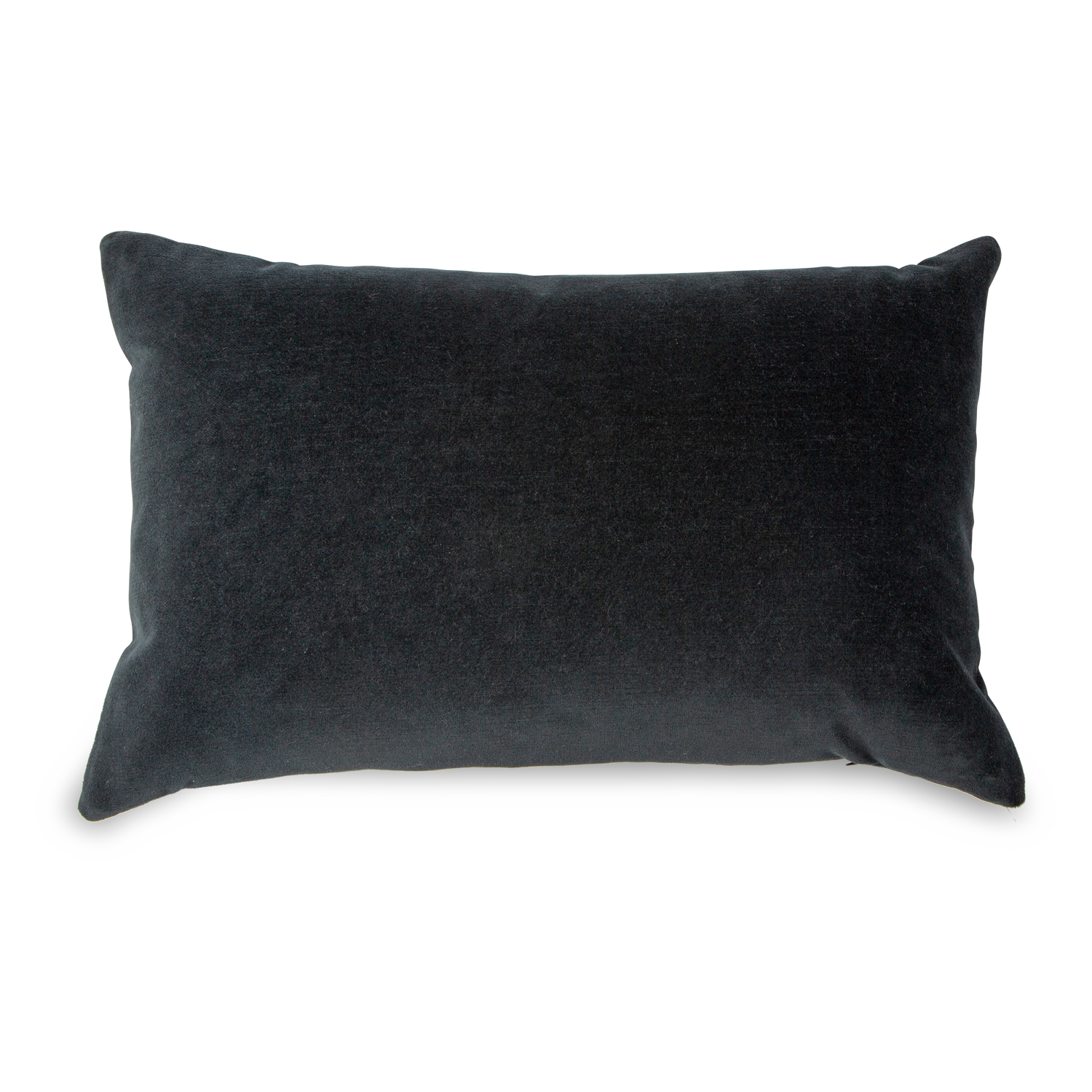 Solid Velvet Pillow