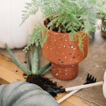 Load image into Gallery viewer, terrazzo planter with plant for a plant lady christmas gift