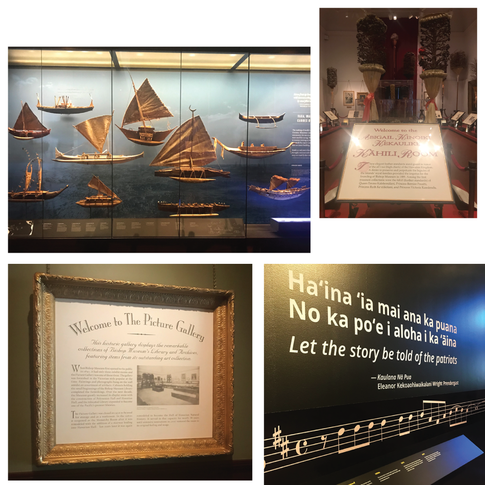 Pacific Hall, Kahili Room, the Music Exhibition, and Picture Gallery at the Bishop Museum