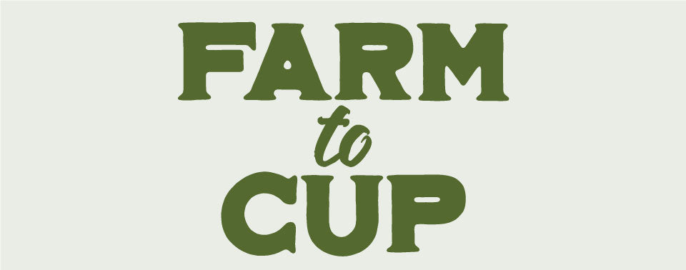 Our Farm to Cup Kona Experience - Graphic