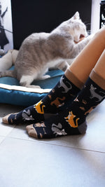 Load image into Gallery viewer, Womens black cat print socks lifestyle