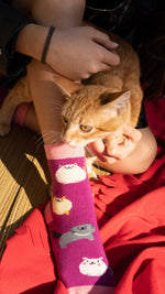 Load image into Gallery viewer, Kid's pink fat cat socks