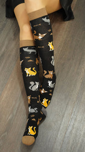 Womens black cat print knee socks lifestyle