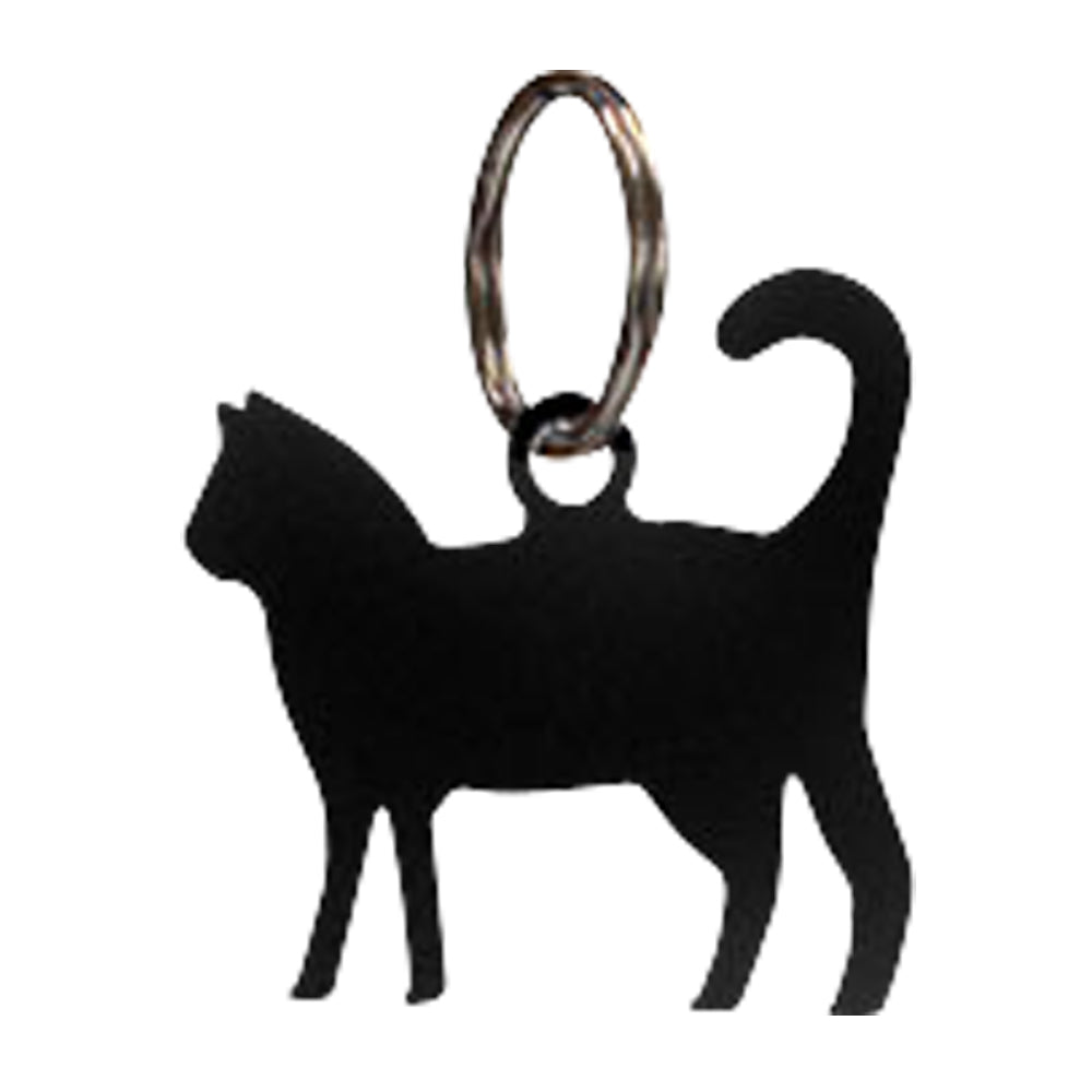 Cat keychain.