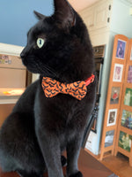 Load image into Gallery viewer, Bat print cat bow tie