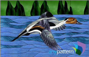 Northern Pintail Duck Stained Glass Pattern