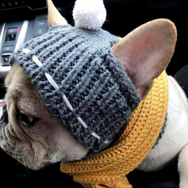 Woolen Puppy Hat