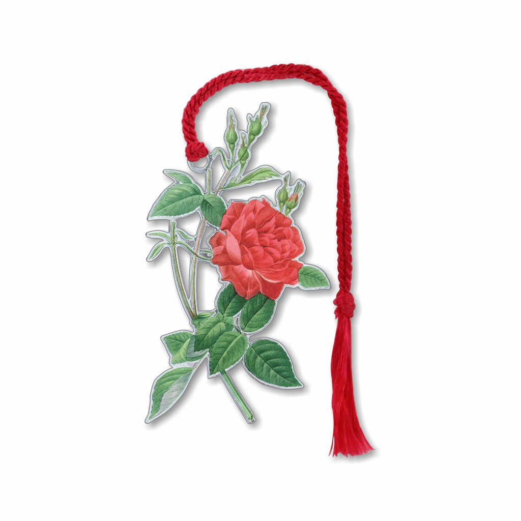 pierre-joseph-redoute-rosa-indica-cruenta-bookmark-photo