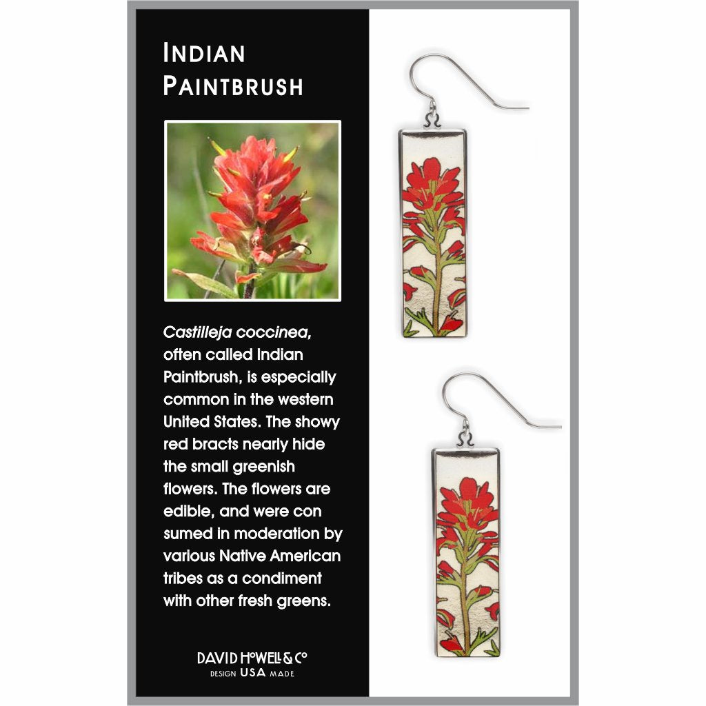 indian-paintbrush-giclee-print-domed-earrings-photo-2