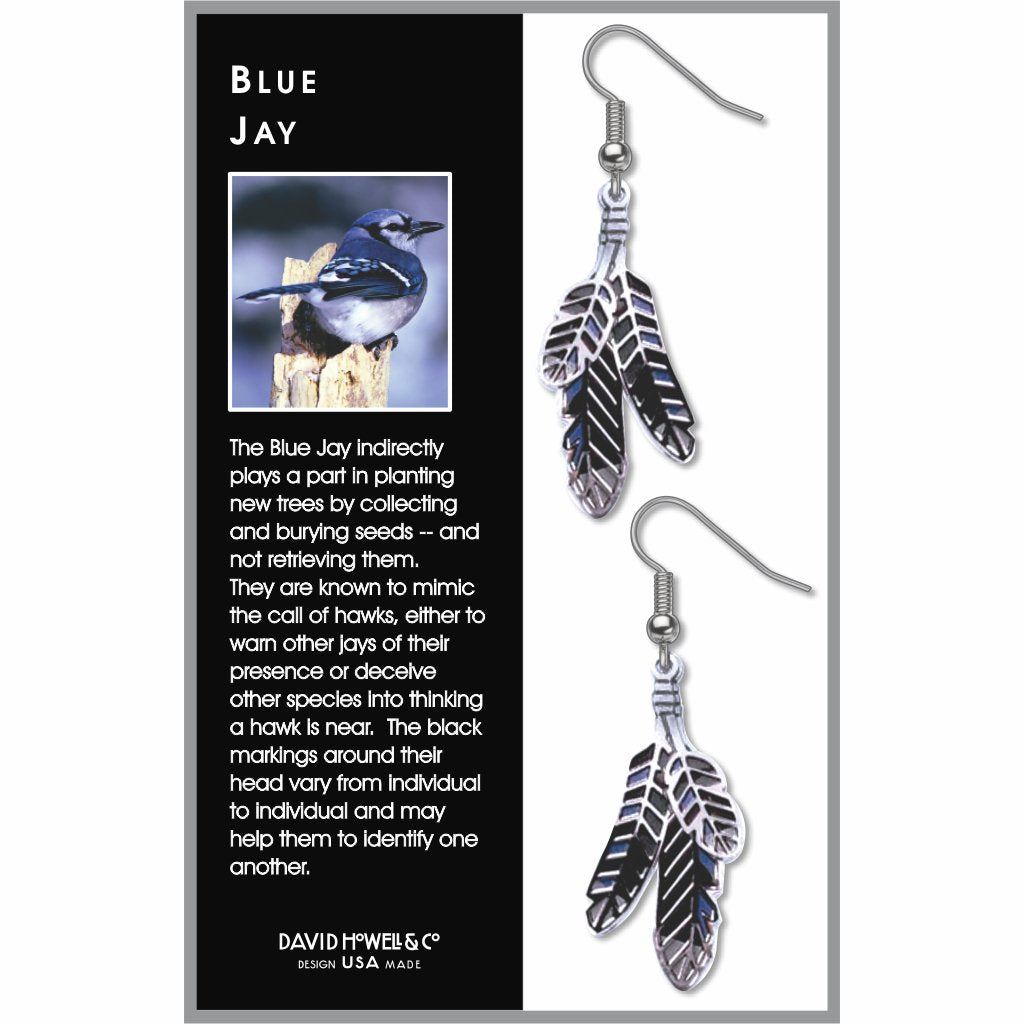blue-jay-black-accents-blue-accents-white-accents-earrings-photo-2