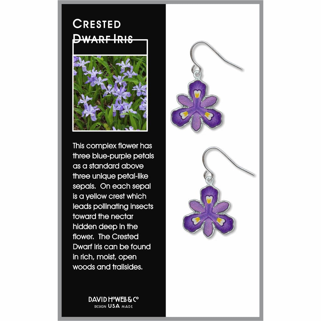 crested-dwarf-iris-giclee-print-domed-earrings-photo-2