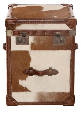 Ashton Hair On Hide Vintage Small Leather Trunk