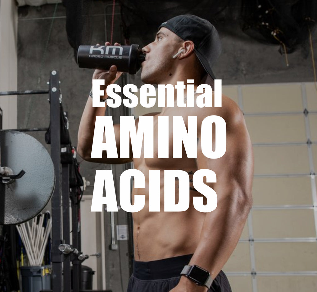 Essential Amino Acids for a Robust and Toned Body