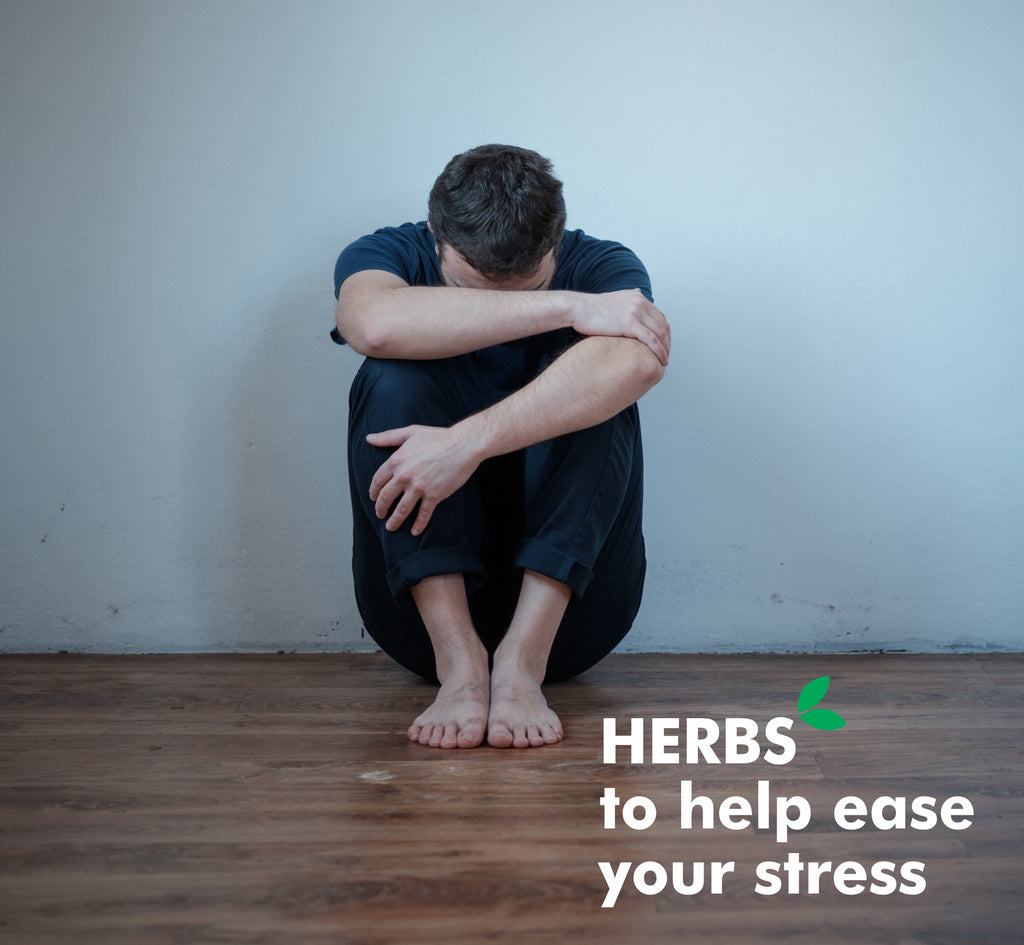 Herbs that would Help you Deal with Excess Stress