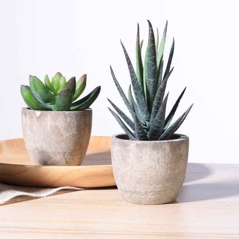 OUNONA 3pcs Faux Succulent Artificial Succulent Fake Simulation Plants with Pots For Home and Office Decoration