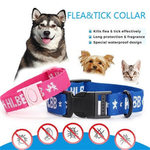 Load image into Gallery viewer, 1Pcs Nylon Dogs Collars Effective Anti Fleas Ticks Mosquito Collar Neck Strap for Cats Dogs