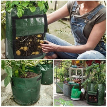 Load image into Gallery viewer, Smart Plant Grow Bags for Potato/Plant Container/ Flowers Pots/Garden Decoration with Handles