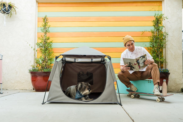 With the Pop 'N Go Pets Playpen, Your Pets Can Always Tag Along
