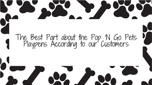 The Best Part about the Pop 'N Go Pets Playpens According to our Customers