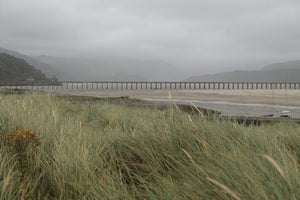 Finnish Forests and Barmouth Estuary