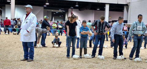 Market Broiler Fair Competition