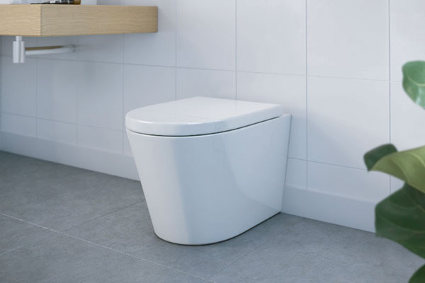 Renee Rimless Wall Faced Pan & In-Wall Cistern Toilet - PLUMBCORP BATHROOM & KITCHEN CENTRE