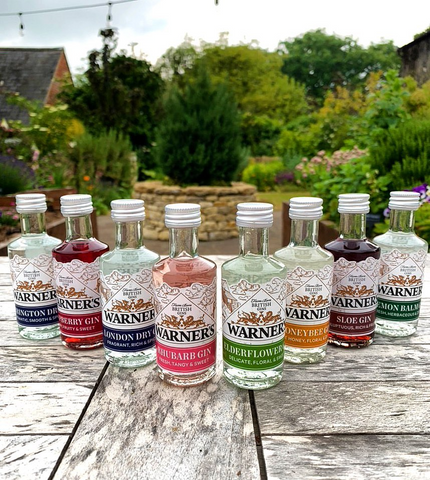 Warner's Gin - Buy online at Lassou