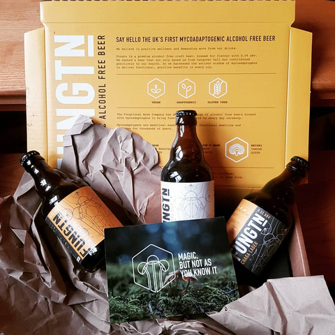 Fungtn - Adaptogenic, Alcohol-Free Beer Brewed with Functional Mushrooms | Lassou