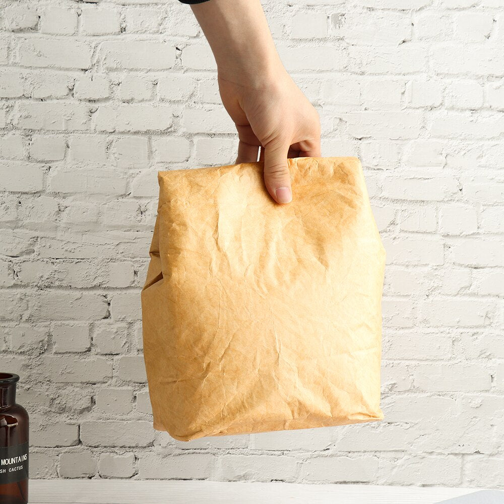 hand holding insulated reusable paper lunch bag