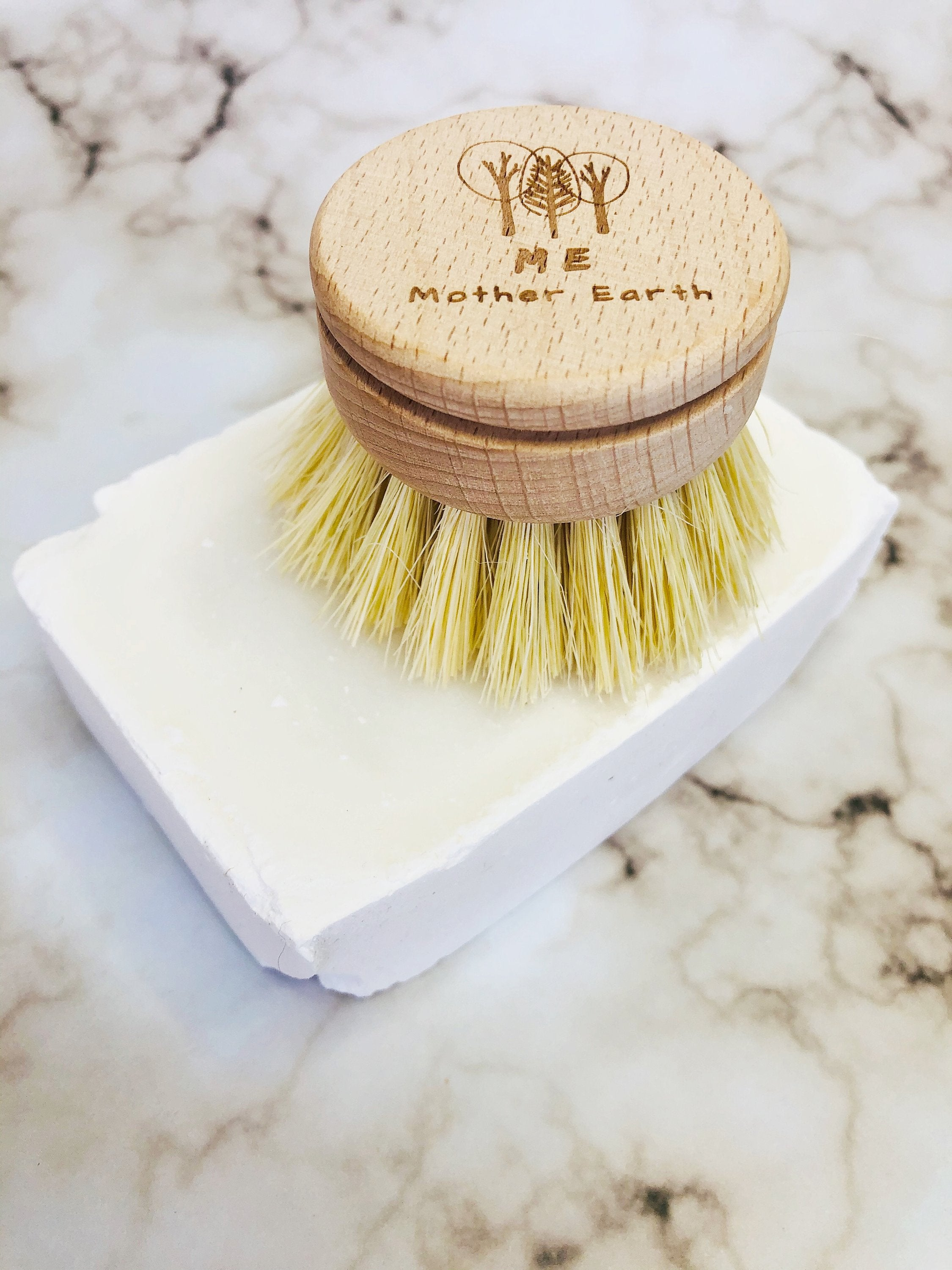 kitchen brush replacement head on bar of soap