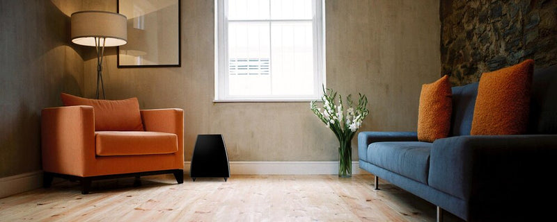 Meridian DSW.2 Digital Active Subwoofer by the window