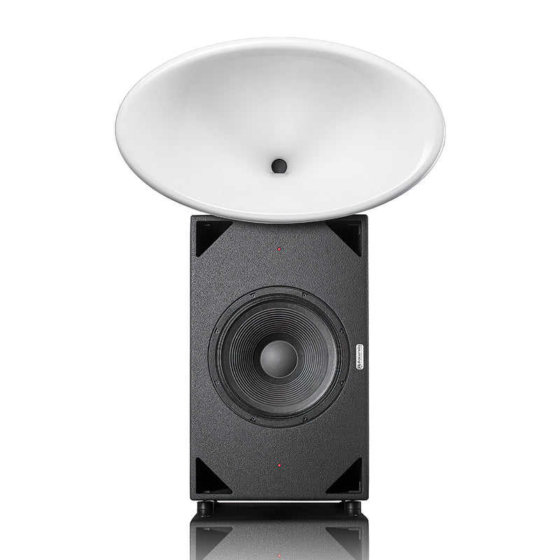 Ascendo Black Swan Fully Active State-of-the-art Point-source Horn Speaker System
