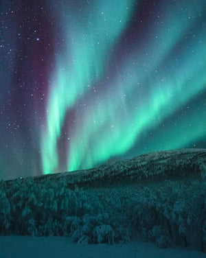 Northern Lights - Paint by Numbers HD