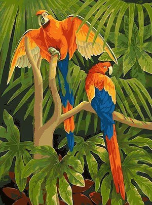 Macaw Parrots - Paint by Numbers Classic