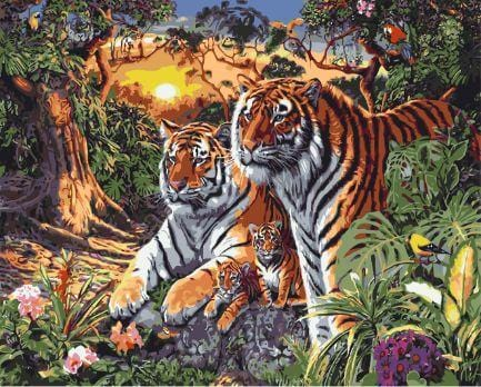 Tigers - Paint by Numbers Classic