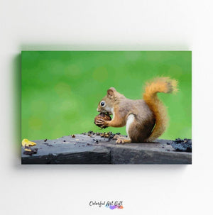 Squirrel - Paint by Numbers HD