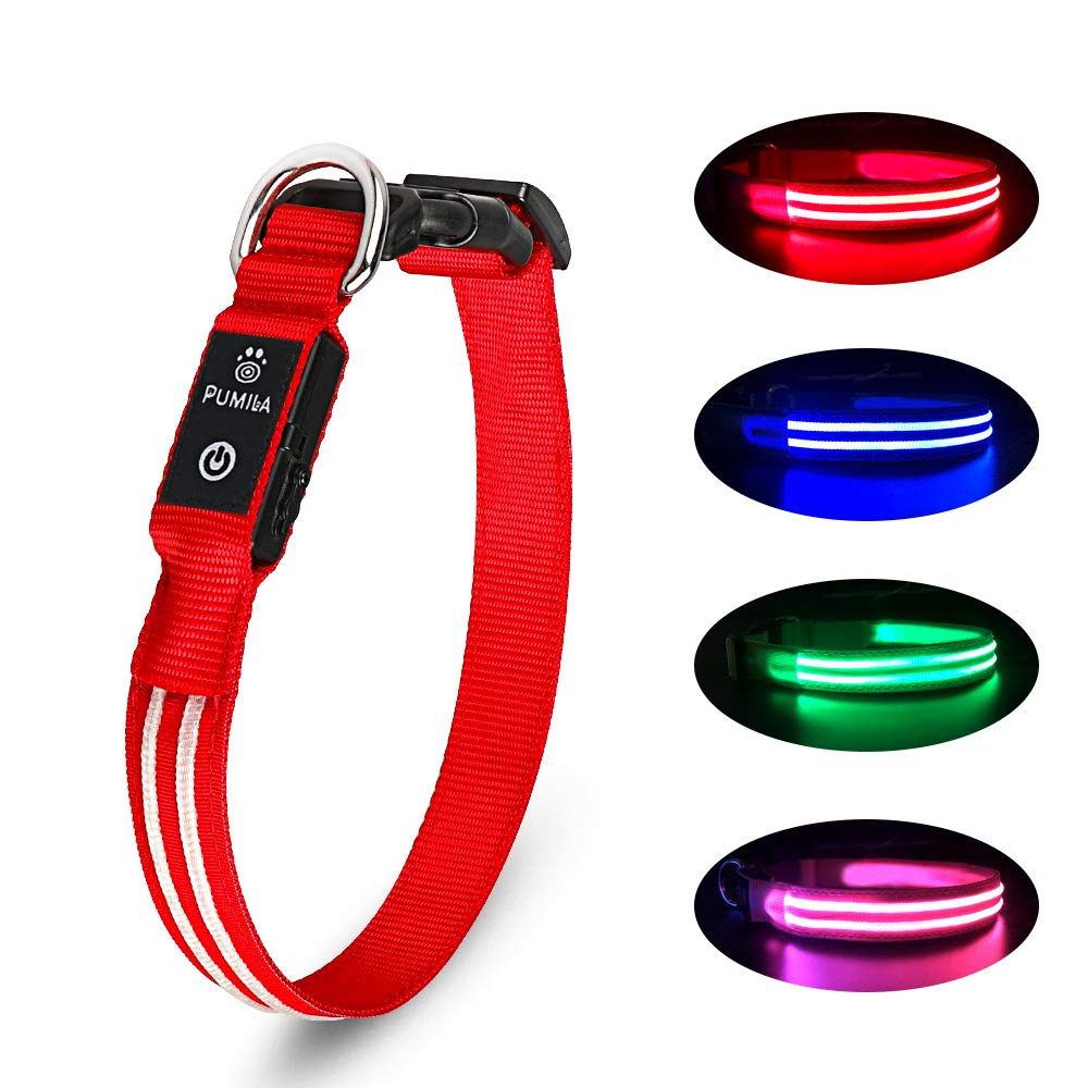 LED Dog Collar - Available In Multiple Colors & Sizes