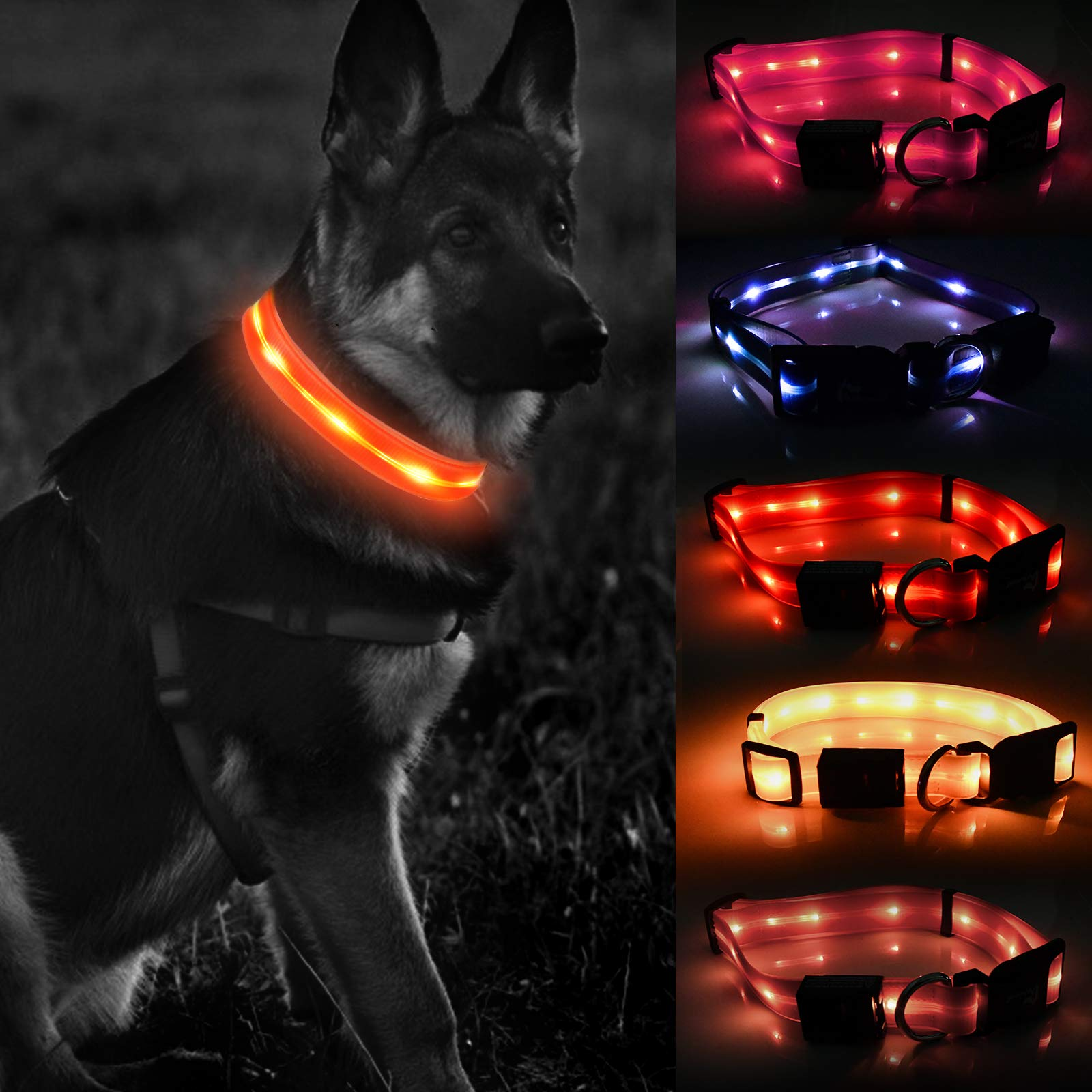 LED Dog Collar - Orange