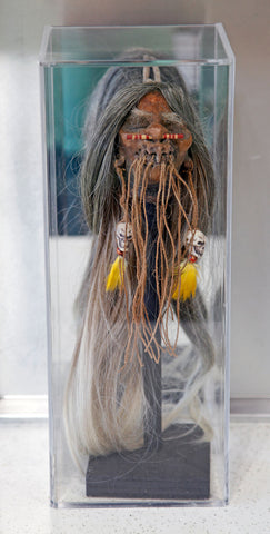 halloween shrunken head in a display case for collectibles