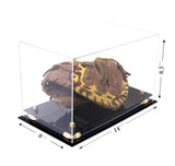 Catchers Mitt <br> Display Case<br> <sub> MLB, NCAA, and more! </sub>, Display Case, Better Display Cases, Better Display Cases - Better Display Cases