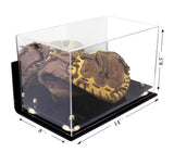 Catchers Mitt <br> Wall Mount Display <br> With Mirror<br> <sub> MLB, NCAA, and more! </sub>, Display Case, Better Display Cases, Better Display Cases - Better Display Cases