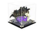 Acrylic Versatile Display Case 10 X 10 X 10 Clear (A028/V33)