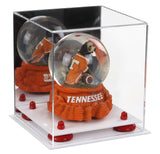 Mirrored Versatile Small Display Case