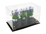 Versatile Medium Rectangle Clear Display Case <br><sub> 14 x 8 x 8.5 (A011), Display Case, Better Display Cases, Better Display Cases - Better Display Cases