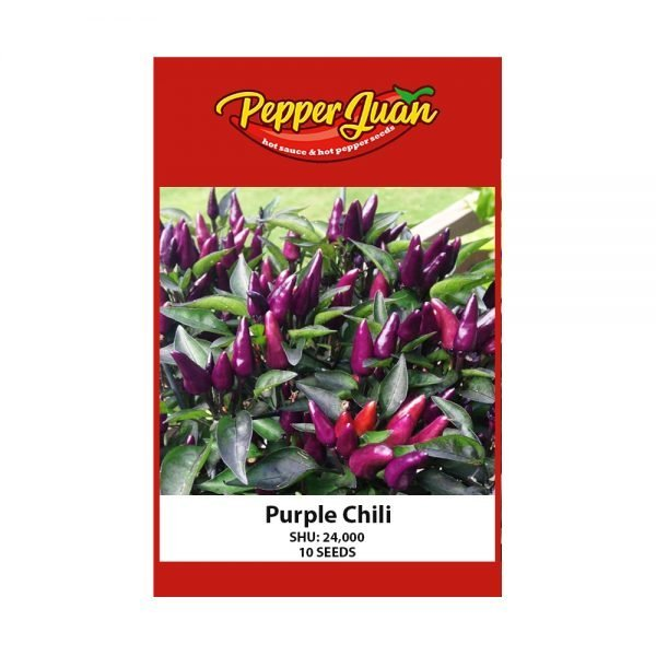 Purple Chili Seeds - Pepper Juan