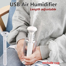 Load image into Gallery viewer, Portable USB Air Humidifier Nano Spray Water Replenishing Air Humidifier USB Humidifier Purifier Atomizer Air Diffuser