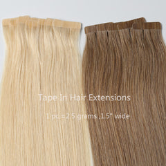 #12-613 Ombre Classic Tape In Hair Extensions 2.5g-piece 100g